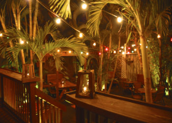 Palm Patio